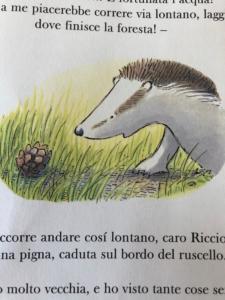 riccio-vecchio-WA0014